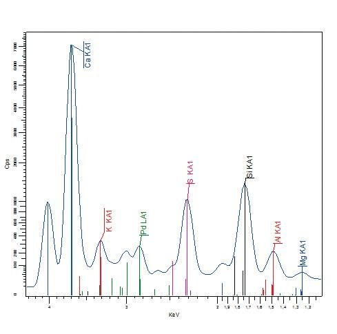 Spectrum of a typical cement sample1 including Pd Lá1 tube.