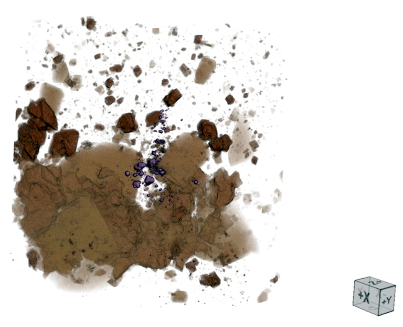 Detailed view of one of the gold bearing regions. The gold mineralization can be clearly seen as the purple colored particles