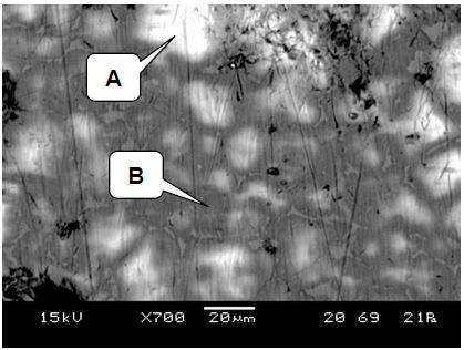 LV-SEM image showing light and dark regions in the clinker matrix, and the presence of grain boundary precipitates. Raman spectra were collected from points A and B
