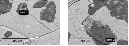 SEM images showing inorganic regions within an iron matrix, and the areas analyzed by EDS and Raman spectroscopy