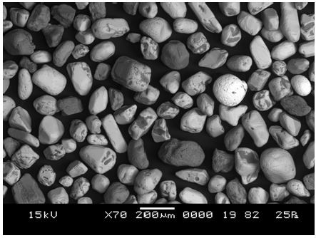 LV-SEM image from the centre of Figure 3 – this was the area from which x-ray maps were collected
