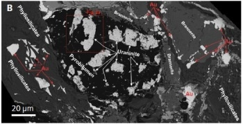 Visualizing the Formation of Uranium and Gold Ore Related to Fossil Hydrocarbons in the Witwatersrand Basin