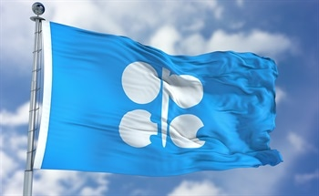 What is the Organisation of the Petroleum Exporting Countries (OPEC)?