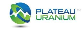 Plateau Uranium Announces Start of Initial Drill Program at High-Grade Pinocho Uranium Occurrence