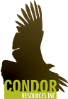 Condor and MMG Enter Exclusivity & Access Agreement for Chile Brahma/Austral Project